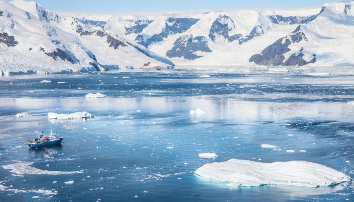 صورة الإقامة بالقطب الجنوبي تقلص حجم الدماغ