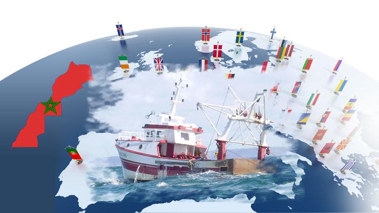"""صورة تقرير إخباري: تأثير إتفاقية الـ""""بريكسيت"""" على اتفاق الصيد البحري بين المغرب والإتحاد الأوروبي"""
