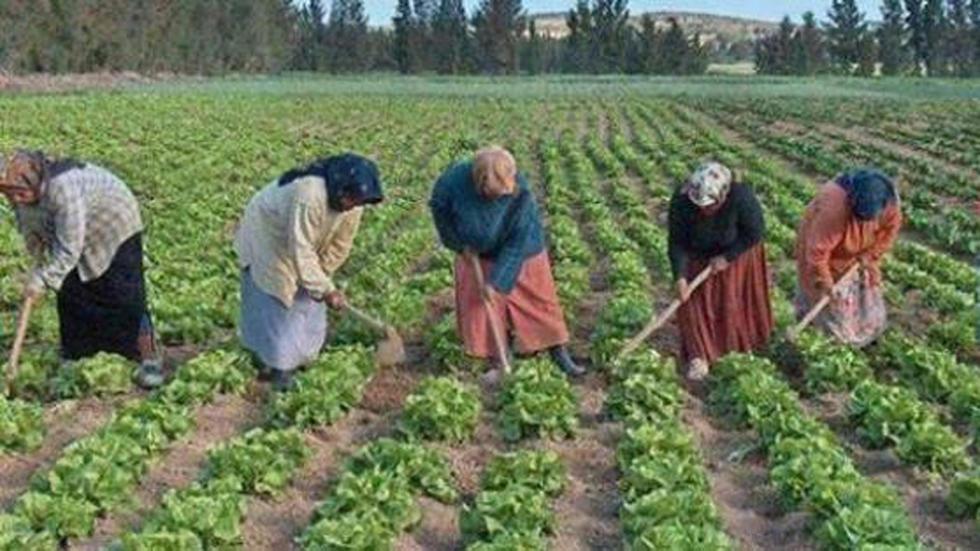 """صورة """"إحميني"""": مشروع من أجل صحة العاملات في أرياف تونس"""