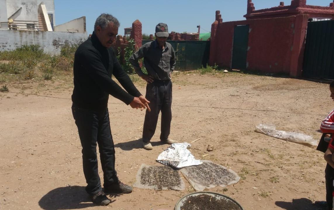 Photo of دوار بضواحي آزمور يتحول إلى مستوطنة  للذباب