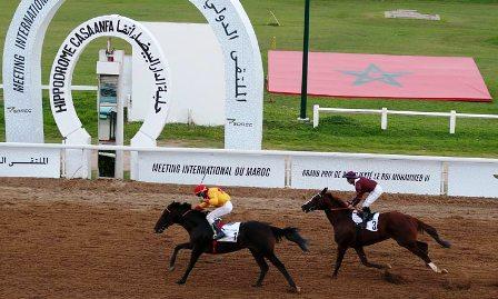 Photo of الدار البيضاء .. الجائزة الكبرى لصاحب الجلالة الملك محمد السادس الخاصة بالخيول الإنجليزية الأصيلة