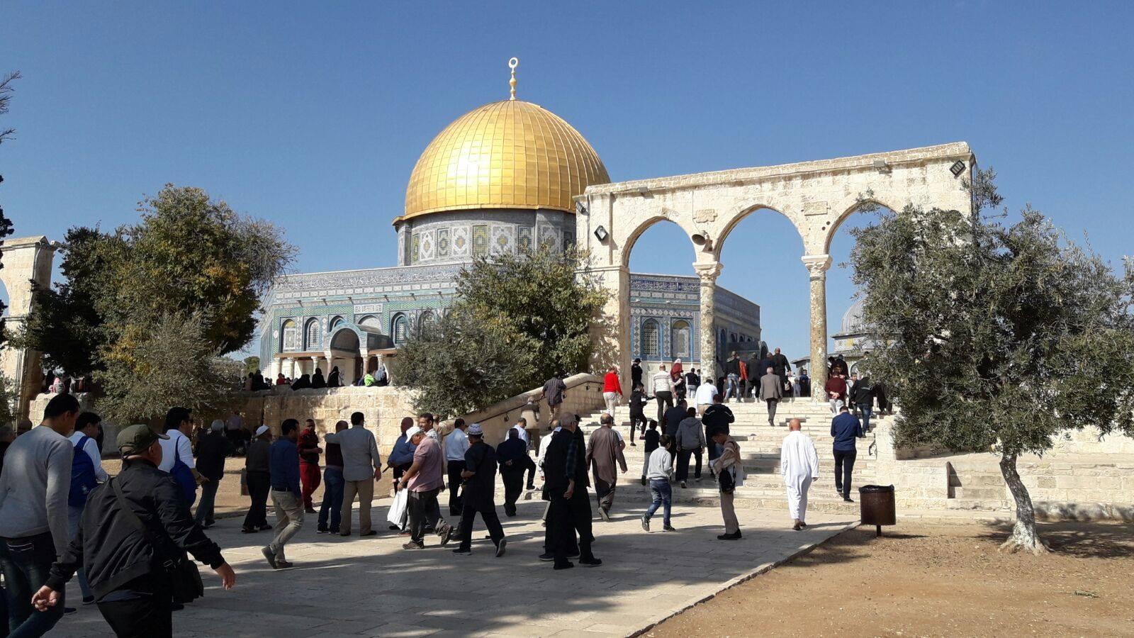 صورة المدير العام للإيسيسكو يشيد بمبادرة الملك في ترميم المسجد الأقصى