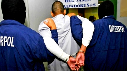 Photo of الأنتربول وشرطة مدريد تطيحان بتاجر مخدرات مبحوث عنه من طرف المغرب