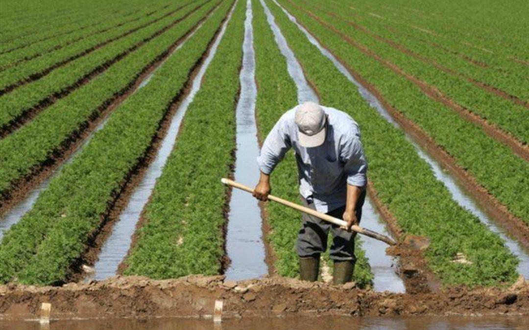 Photo of التحسيس بأهمية الزراعة العضوية في لقاء توعوي تدريبي بمكناس