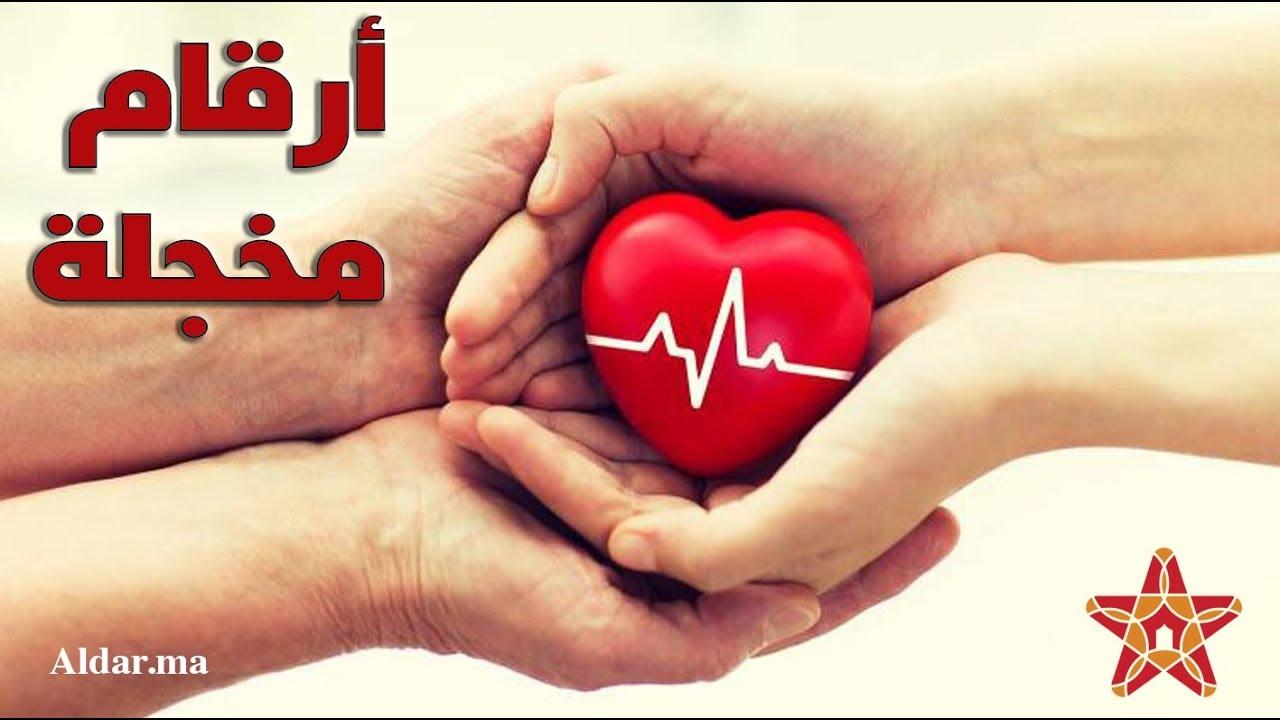 Photo of التبرع بالاعضاء في المغرب.. أرقام مقلقة