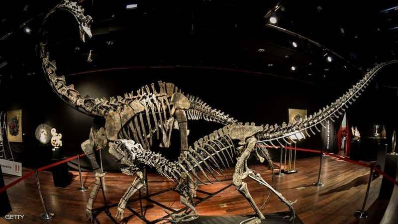 "Photo of دراسة أمريكية جديدة ""تنسف"" فرضية ""هلاك الديناصورات"""