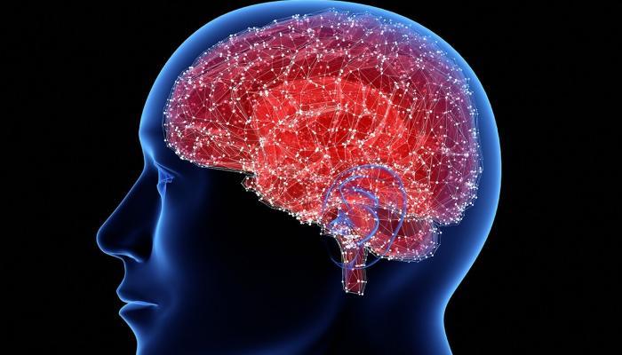 صورة باحثون أمريكيون ينصبون فخا لبروتين يتسبب في 3 أمراض دماغية