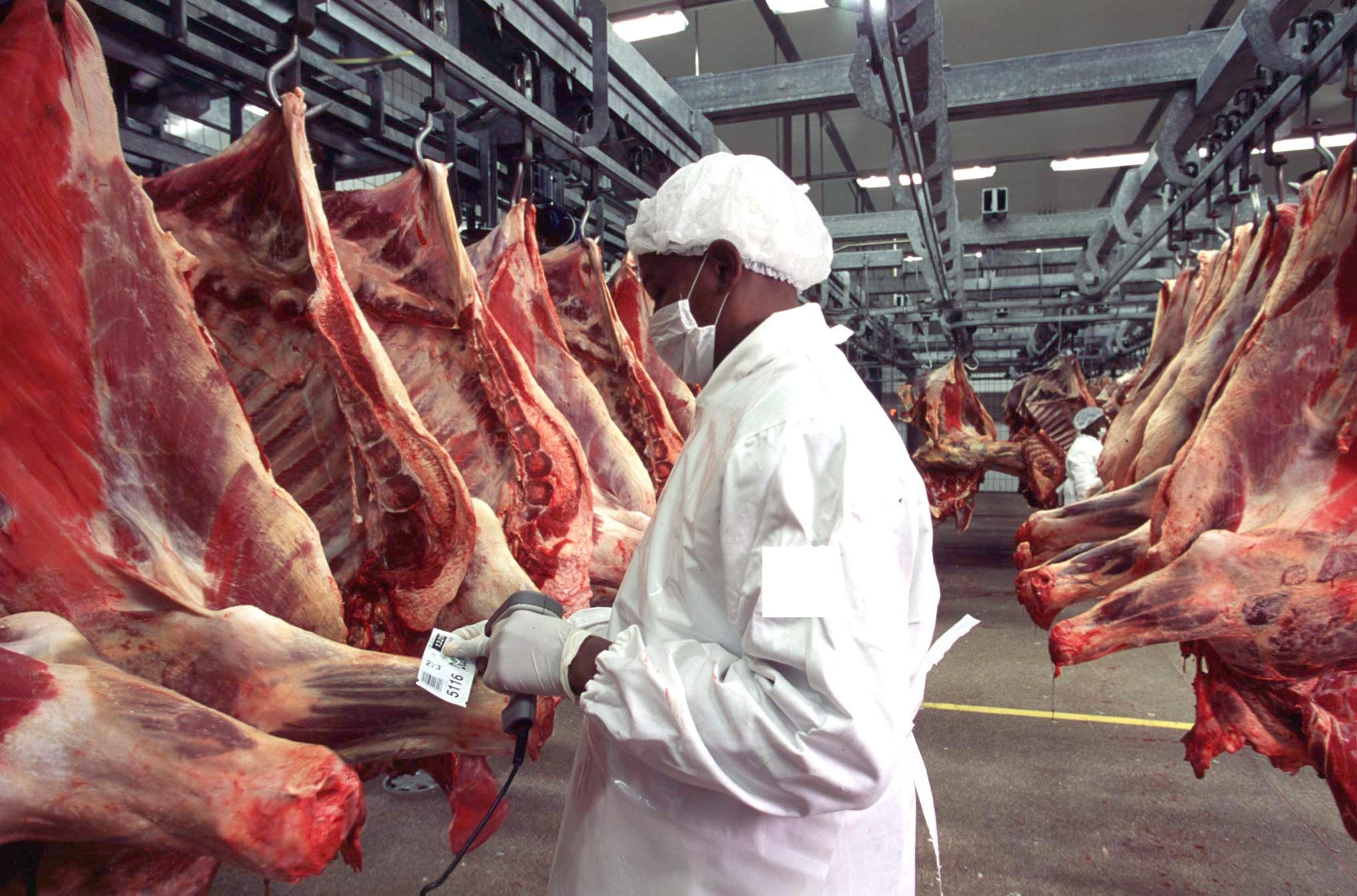 Photo of تفاصيل سماح المغرب باستيراد لحوم الأبقار الأمريكية