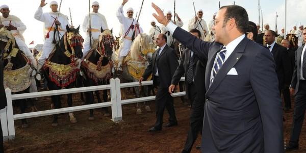 Photo of معرض الفرس للجديدة.. حب الحصان ينتقل بسعادة إلى الأجيال القادمة
