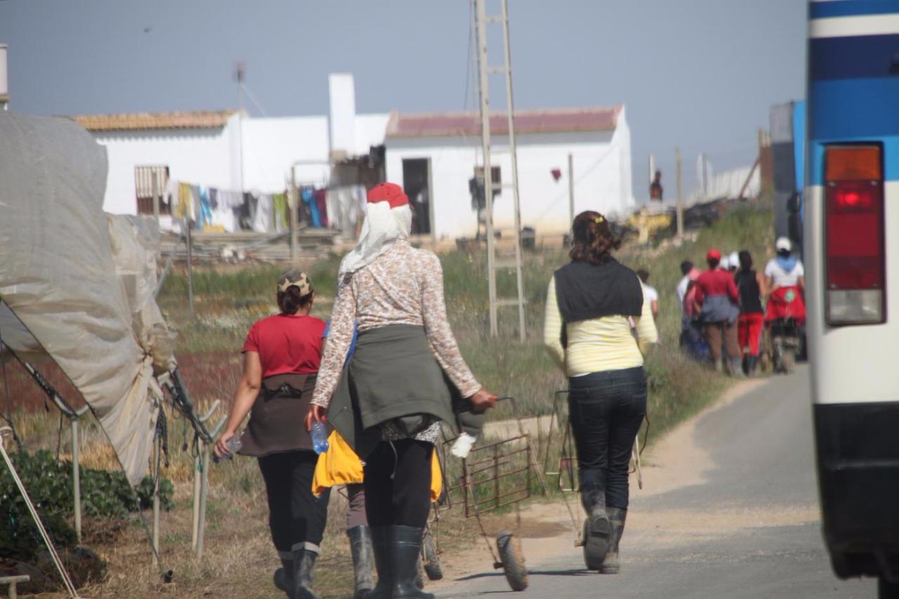 Photo of نقابات إسبانية تنتقد معايير اختيار العاملات المغربيات في حقول الفراولة