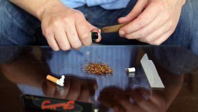 Photo of بوطيب يكشف خطة الداخلية لمواجهة المخدرات بالمدارس