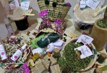 Photo of المنتوجات المجالية تبصم على حضور قوي في قطاع الصناعة التقليدية المغربية