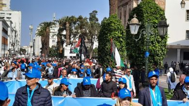"""صورة السعيدي ل""""الدار"""": مسيرة الرباط مناسبة لهيئات التجمع الوطني للأحرار للتعبير عن موقفهم الثابث في القضية الفلسطينية"""