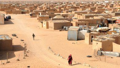 صورة الناشط الصحراوي فاضل بريكة يفضح انتهاكات البوليساريو بدعم ورعاية من الجزائر