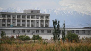 """صورة الصين: تقرير يكشف تورط شركات عالمية في استغلال أقلية الأويغور المسلمة عبر""""العمل القسري"""""""