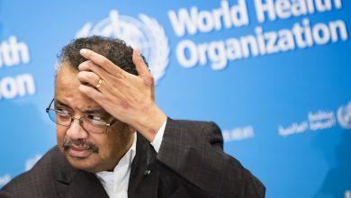 Photo of طبيب مغربي يهاجم منظمة الصحة العالمية..فقدت المصداقية والمسؤولية خلال أزمة كورونا