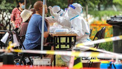 Photo of الفيروس باق.. والمهدد بالاختفاء هو الإنسان