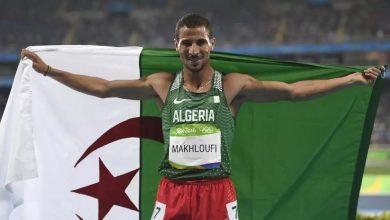 Photo of نداء غضب واستغاثة من البطل الأولمبي الجزائري توفيق مخلوفي العالق بجنوب أفريقيا منذ 4 أشهر