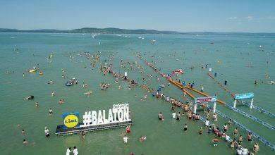 صورة رغم كورونا.. الآلاف يشاركون في أطول سباق للسباحة في المياه المفتوحة بأوروبا [