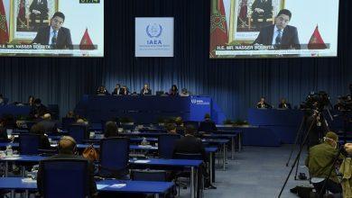 صورة التأكيد بفيينا على دور التكنولوجيا النووية في محاربة سرطان عنق الرحم بإفريقيا