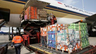 صورة تقرير يرصد ارتفاع صادرات المغرب من الفواكه والخضروات الموجهة لإسبانيا