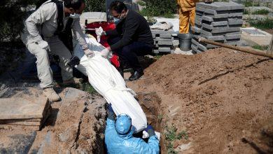 صورة هولندا..الاشتباه في تورط مغربية في قتل ابنها بمادة كيميائية بعد أشهر من دفنه بالمغرب