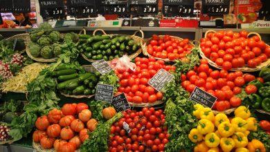 صورة بالأرقام..إسبانيا تحتكر ثلث صادرات المغرب من الفواكه والخضر