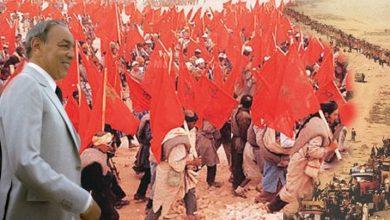 صورة الذكرى 45 للإعلان عن تنظيم المسيرة الخضراء، محطة وضاءة في تاريخ المملكة المغربية