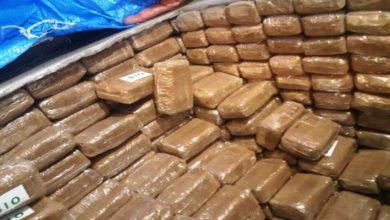 صورة الحسيمة : إتلاف حوالي 12 طنا من المخدرات