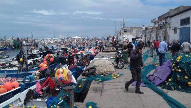 صورة الصيد الساحلي و التقليدي.. تراجع بنسبة 4 بالمئة من الكميات المفرغة خلال الأشهر التسعة الأولى