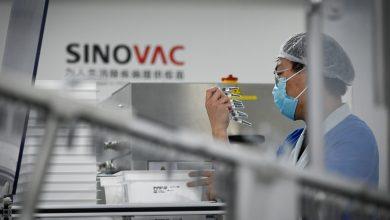 صورة إندونيسيا تختار مختبرات سينوفاك وسينوفارم على غرار المغرب والإمارات