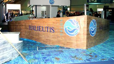 صورة كوفيد 19 يؤجل الدورة السادسة من معرض أليوتيس إلى فبراير 2022